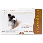 RXV REVOLUTION BROWN,6PK,10-20LB