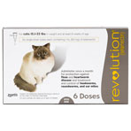 RXV REVOLUTION FOR CATS 15.1-22LBS, 6/PK