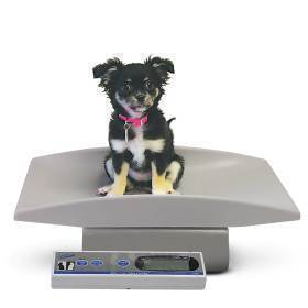 SCALE,PEDIATRIC SCALE, PORTABLE
