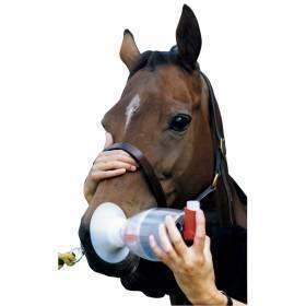 Nebulizer, equine haler, reusable spacer