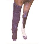 """Brace, horse 5-strap leg stabilizer 6"""" x 23"""", parson's"""