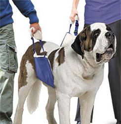 SOFT QUICK LIFT FOR DOGS - EXTRA LARGE